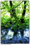 Green and blue by AStoKo
