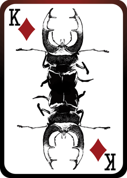 Stag Beetle Playing Card (King of Diamonds) by JackSephton
