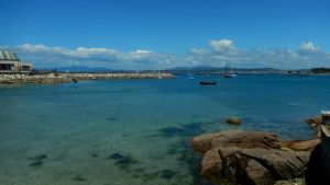 The beauty of the sea by Seigner