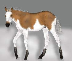 3235 TWF Goldschlager (Foal Ref) by MissStylish