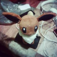 I Captured an Eevee! by iPandacakes