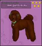 Perfect Poodle Ginger by Pipezz
