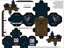Andre Johnson Texans Cubee by etchings13