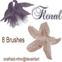 Floral Brushes by snathaid-mhor