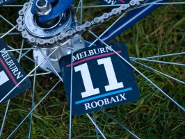 Melburn Roobaix 11 by wordynerd