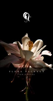 Package - Flora - 0.5 by resurgere