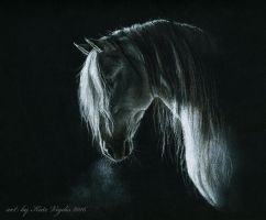 Grey Andalusian by KateVigdis