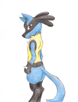 Lucario Commish by ShadowPoni