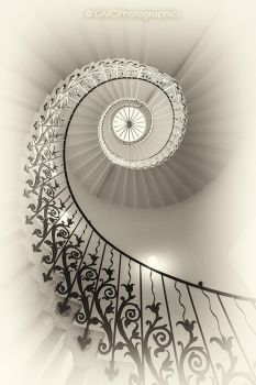 The Spiraling Tulip Staircase by GMCPhotographics