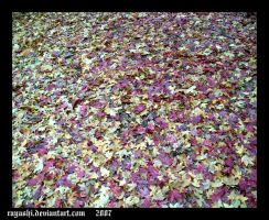 Fallen Leaves by Rayashi