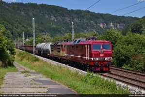 DB 180-011+CDC 372-006 Dolni Zleb zast 04-07-14 by Comboio-Bolt