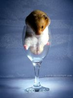 Hamster Wine - 1 by eldris