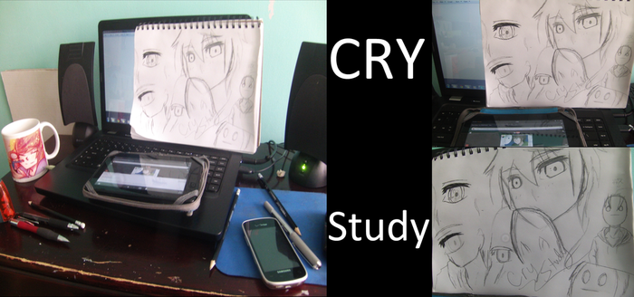 Cry Studies by SoundlessAlice