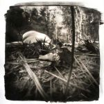 Pinhole Self Portrait by StephanieSlate