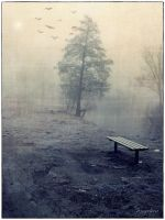 In the Mist II by groby