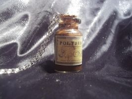 Harry Potter inspired Polyjuice potion necklace by steveabbo