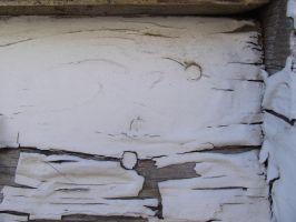 painted wood 14 by juutin-stock
