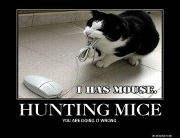 Hunting Mice - Demotivational by juanito316ss