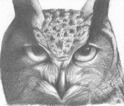 Owl pencil by miss-frog