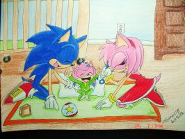 :AT:Sonic_Flash_And_Amy_Lets_Play by Sonar15