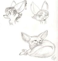 Various fennecs by foxyfennec