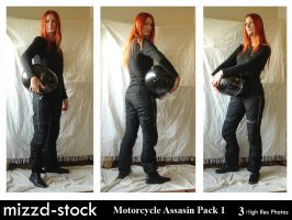 Motorcycle Assasin Pack 1 by mizzd-stock