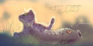 cat by Orphen-Sirius