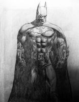 Batman - Arkham City by pikeman1