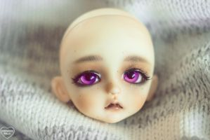 Second Faceup by breakeric