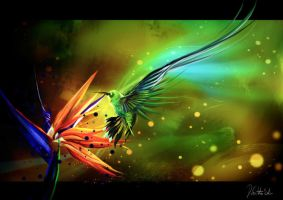Birds of Paradise by DeGatto