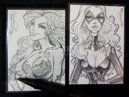 ATC Poison Ivy and Black Cat by KelleeArt