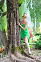 Tinker Bell 2nd shot by Sandman-AC