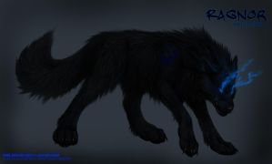 Shadow Wolf: Ragnor by Kazera-Emberhowl