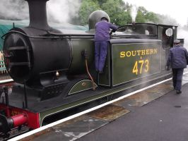 LBSCR E4 at Sheffield park station by FFDP-Neko