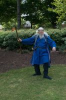 2014-08-31 Wizard in Park 08 by skydancer-stock