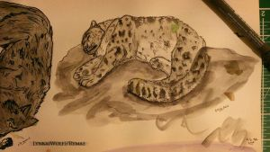Watercolour doodles - Snow Leopard practice 1 by rymae