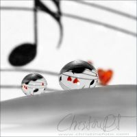 tune by dini25