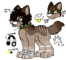 Kaida Temporary Ref by CollectionOfWhiskers