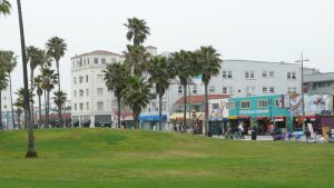 venice beach by jollyordz
