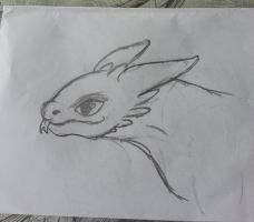 HTTYD Toothless doodle by DaFloofyHamster