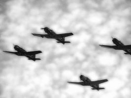 WWII USA Armed Forces Planes by nwo