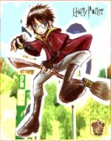 Harry Potter: Quidditch by panza