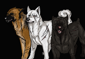 Males by boukei