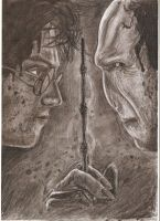 Harry Potter and Voldemort by MajaGantzi