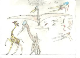 PA Quetzalcoatlus by TeamArtists