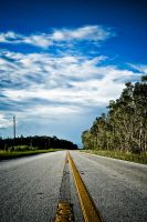 Krome Avenue, Fl by Crazito