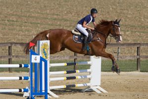 Level 5 Showjumping - L-Springen 27 by LuDa-Stock