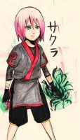 Sakura of the Haruno Clan by Taka-pon