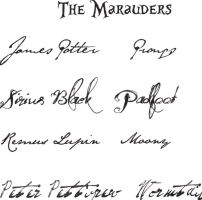 The Marauders by Astus968