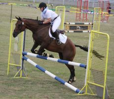 STOCK Showjumping 496 by aussiegal7